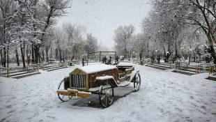گزارش تصویری از بارش برف در سقز